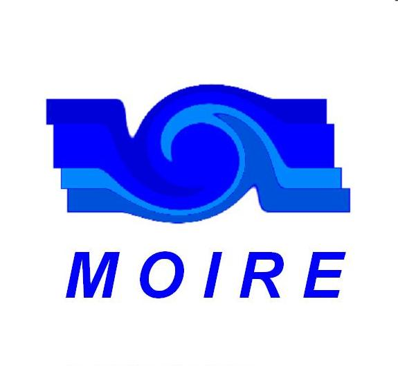 MOIRE2013